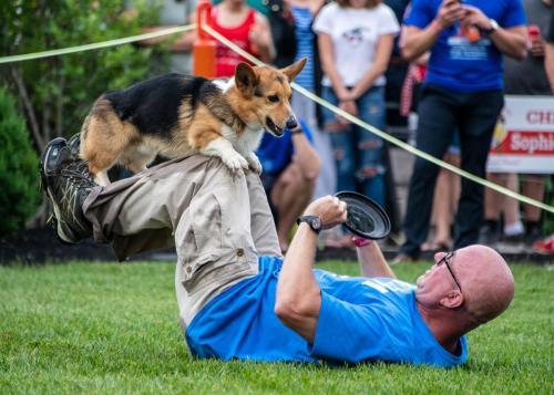 EVENT 8 - DOG FRISBEE